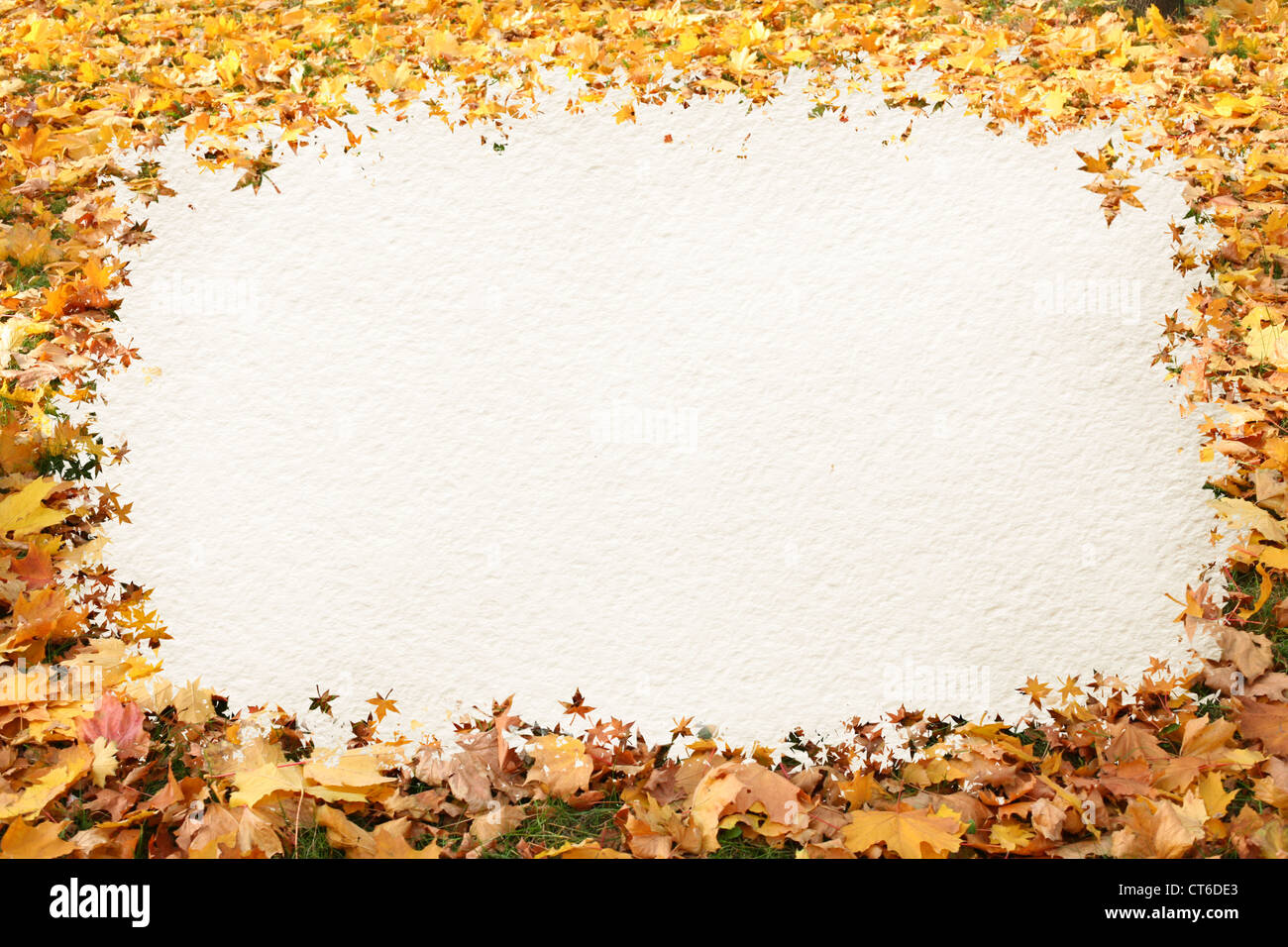 Autumn leaves frame for your text - Stock Image