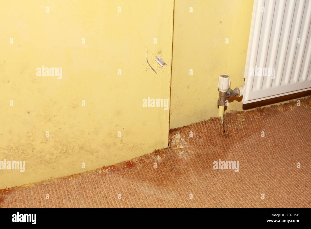 the effect of a leaking pipe showing carpet damage and rising damp in the walls - Stock Image