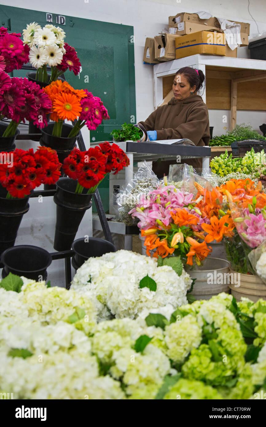 Los angeles flower district stock photos los angeles flower los angeles a woman wraps flowers in los angeles flower market most flowers mightylinksfo