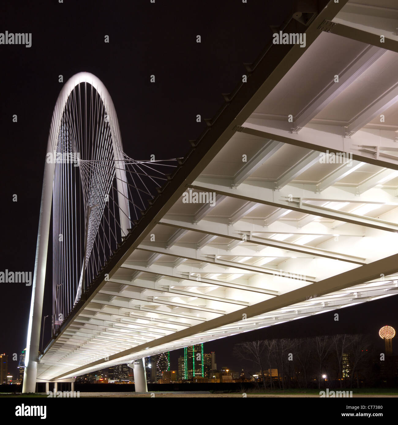 The new (2012) Margaret Hunt Hill bridge, designed by Santiago Calatrava, with night lights of Dallas, Texas in - Stock Image