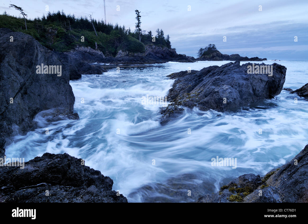 rocks on coast at pacific rim national park - Stock Image