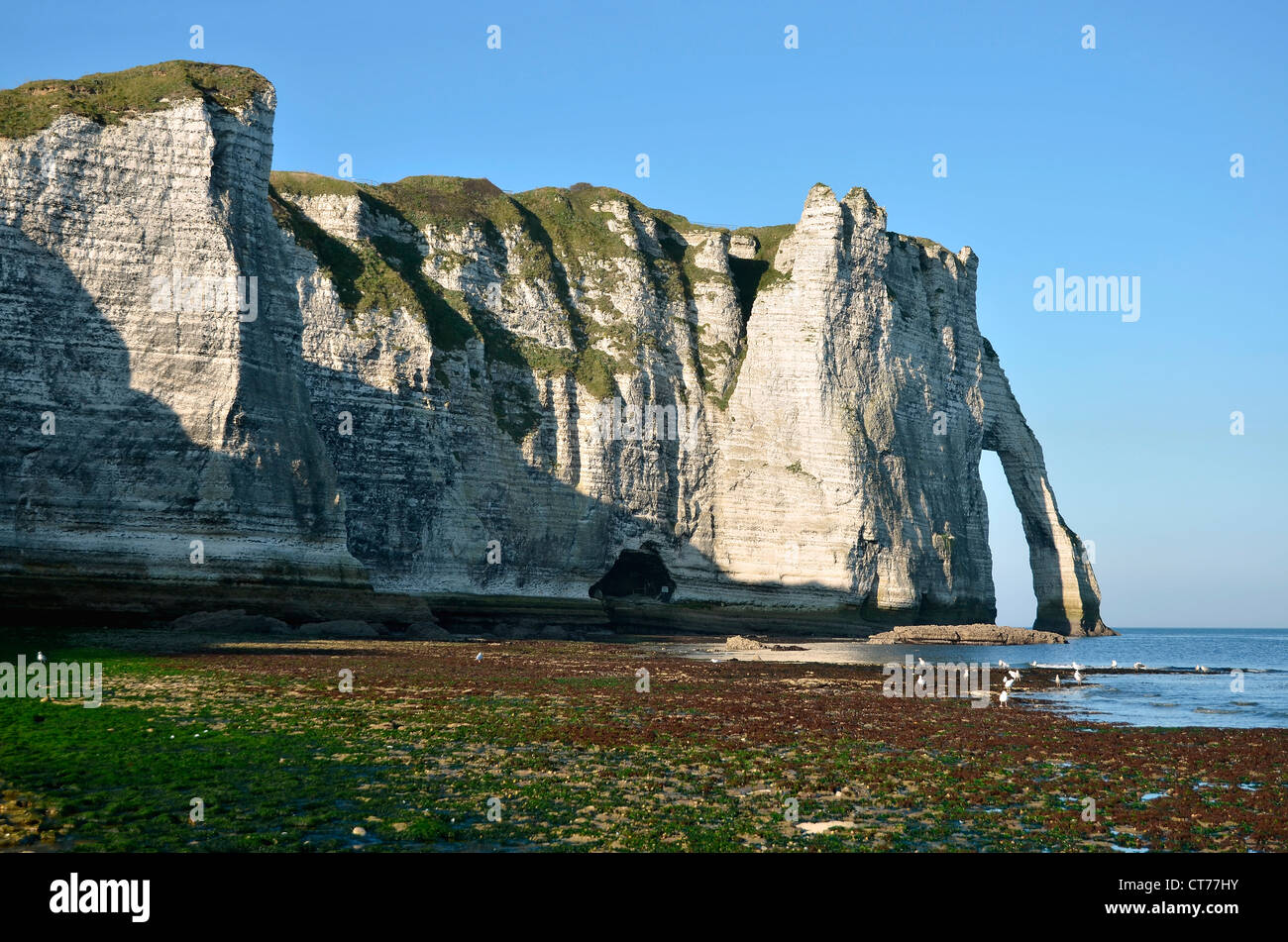 """Famous cliffs """"d'Aval"""" of Etretat at low tide. Etretat is a commune in the Seine-Maritime department in France - Stock Image"""