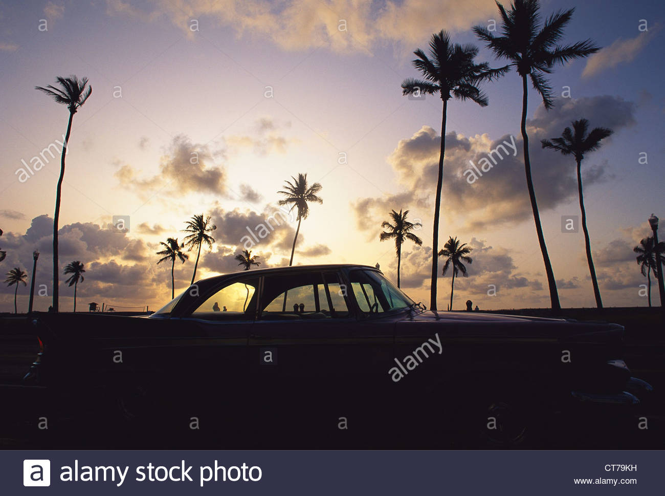 Classic American car under sunset and palm trees - Stock Image