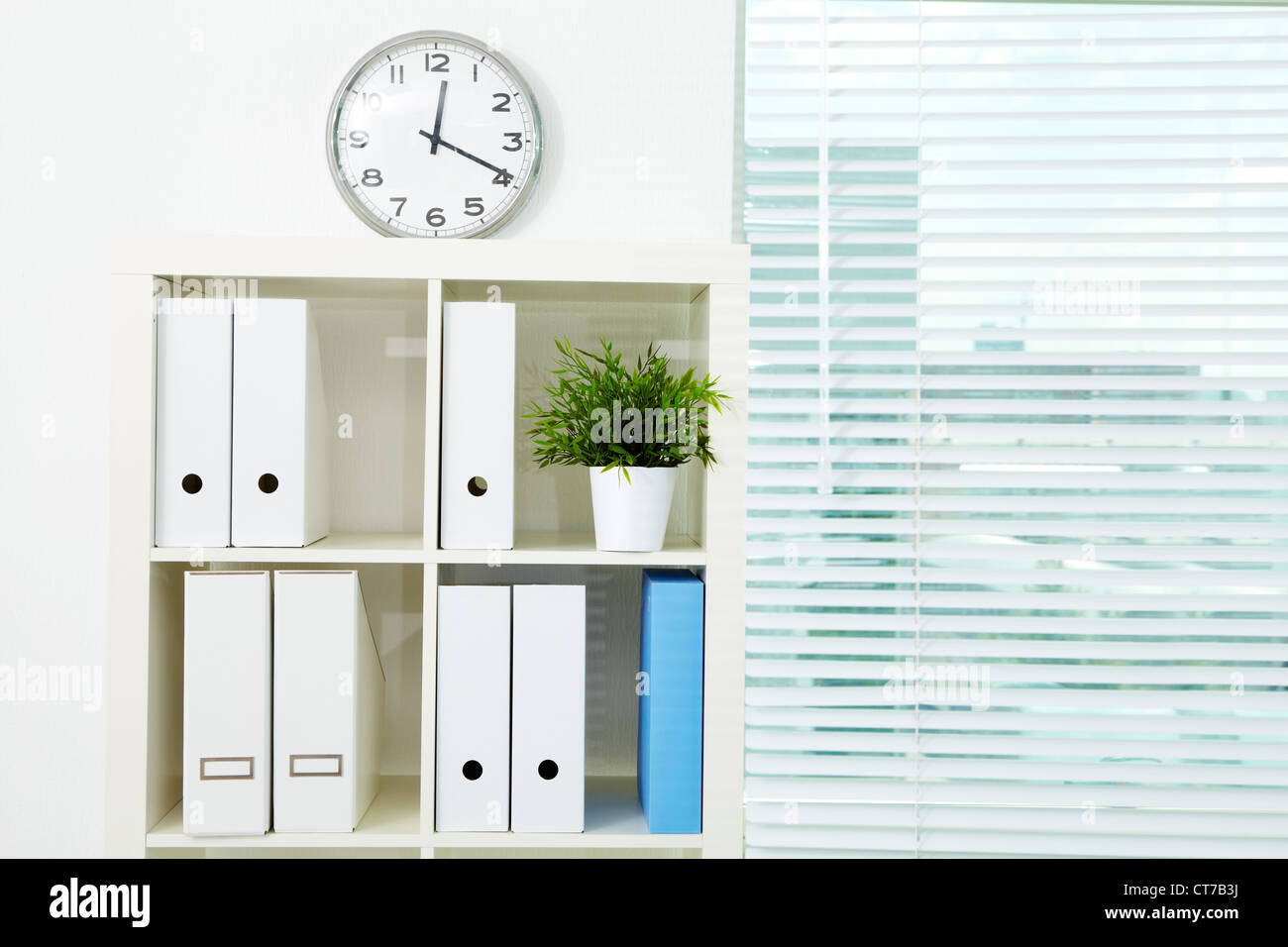 Image of board with documents and green plant in office - Stock Image