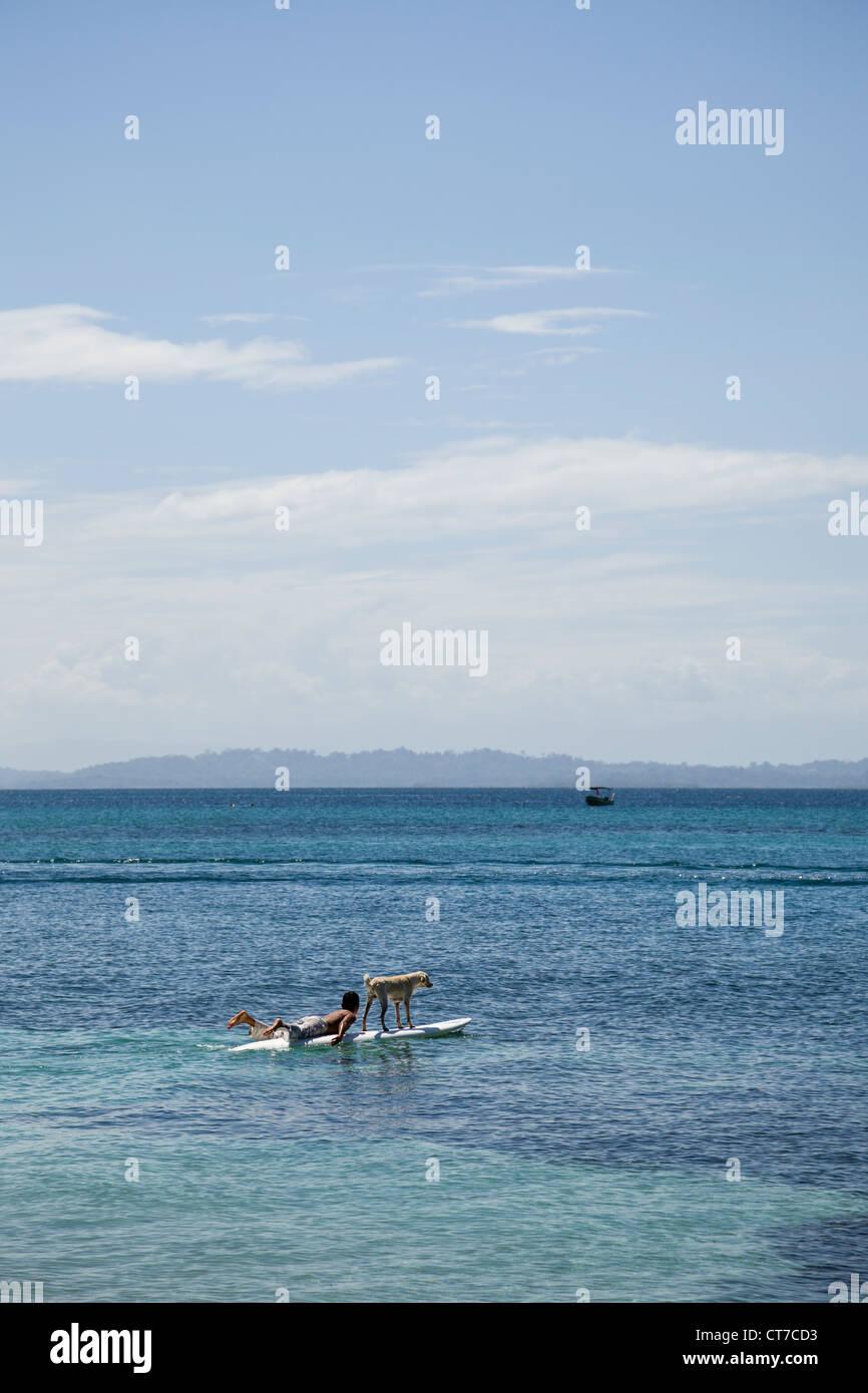 Dog Boarding Hawaii Big Island