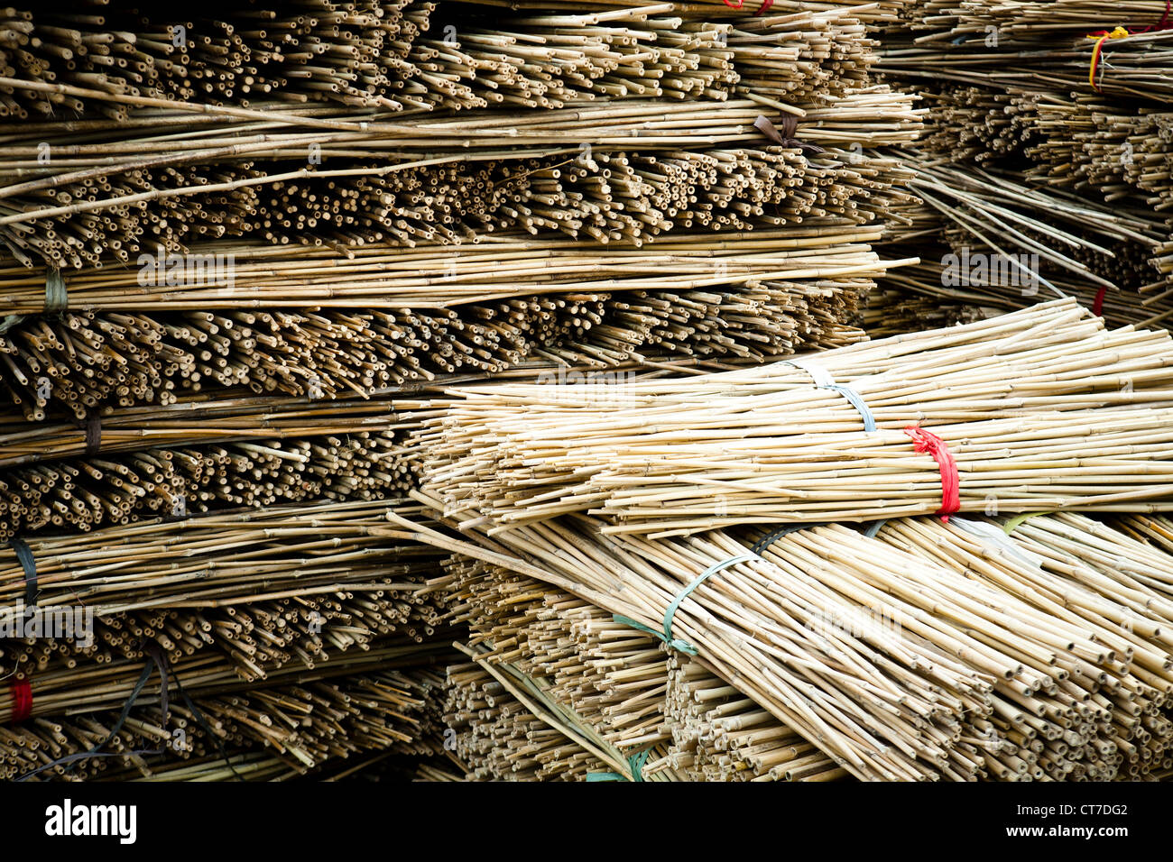 Stack of bamboo wood bundles - Stock Image