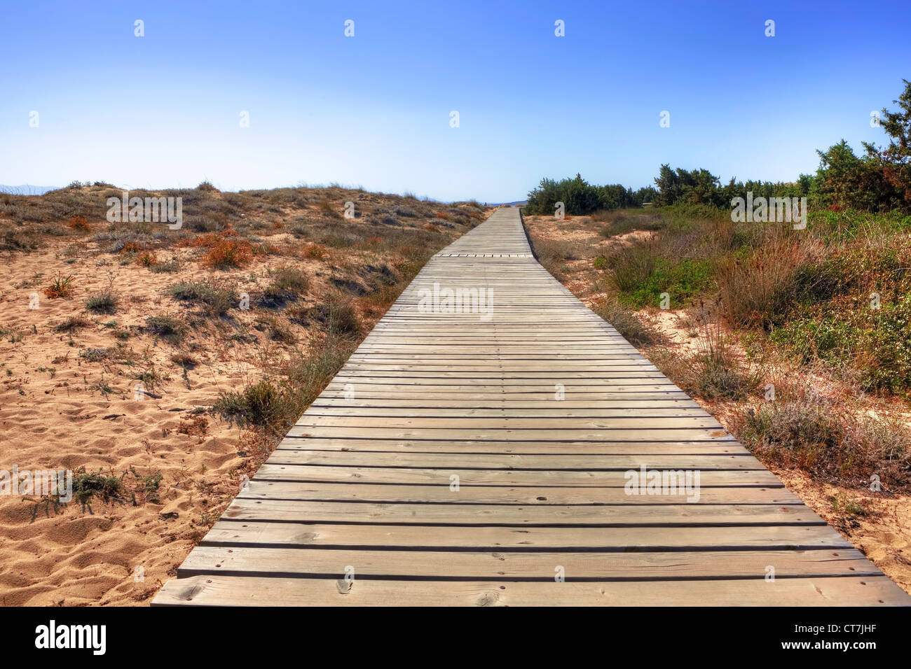 The famous dunes of Plaka, Naxos Greece - Stock Image