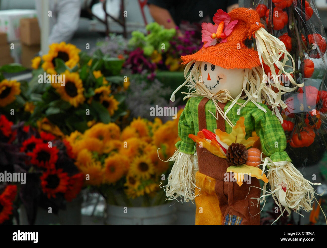 Farmers Market Scarecrow & SunflowersStock Photo
