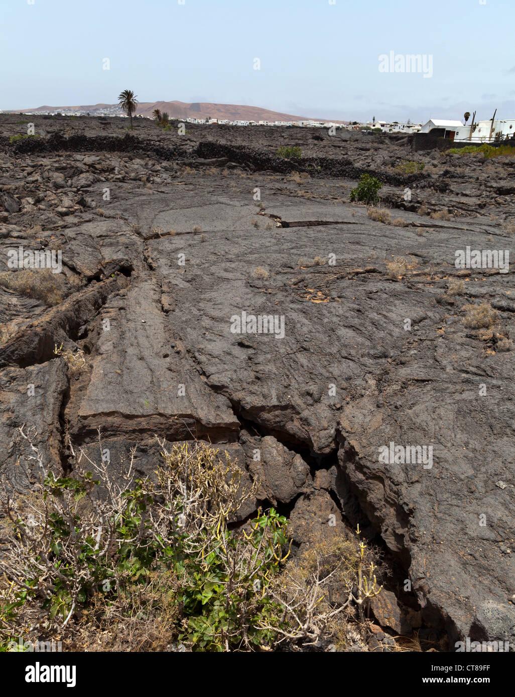 Lanzarote, Lava fields at the Fundacion Cesar Manrique - Lanzarote, Canary Islands, Spain, Europe - Stock Image