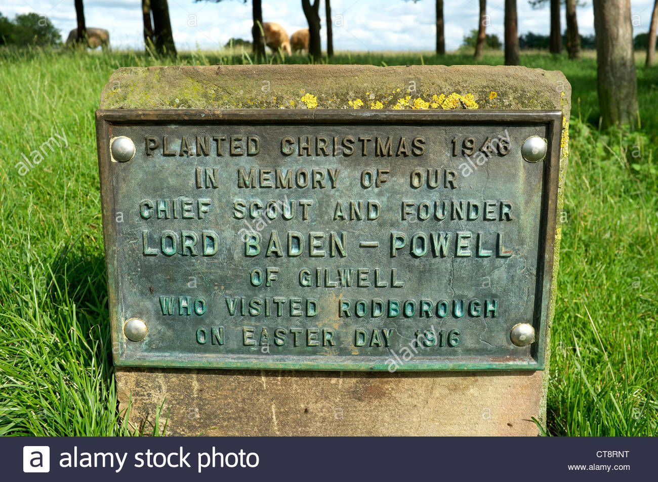 A plaque for the Baden-Powell tree copse on Rodborough Common near Stroud in Gloucestershire, UK. Stock Photo