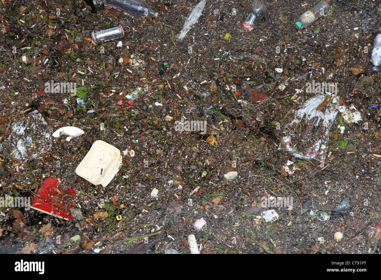 Debris floating on the surface of the river Seine in Paris - Stock Image