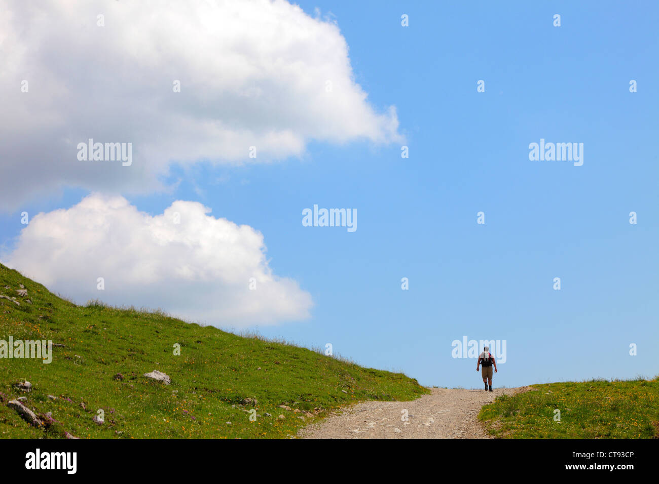 Mountain hiking path in the Mangfall mountains, Bavarian alps. - Stock Image