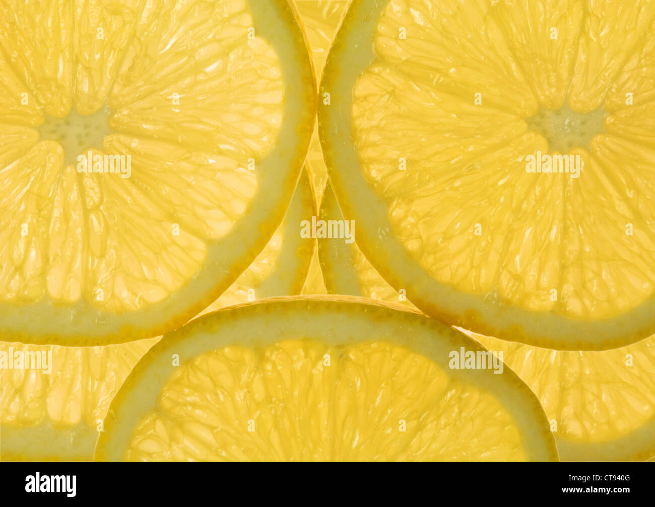 Citrus limon, Lemon - Stock Image