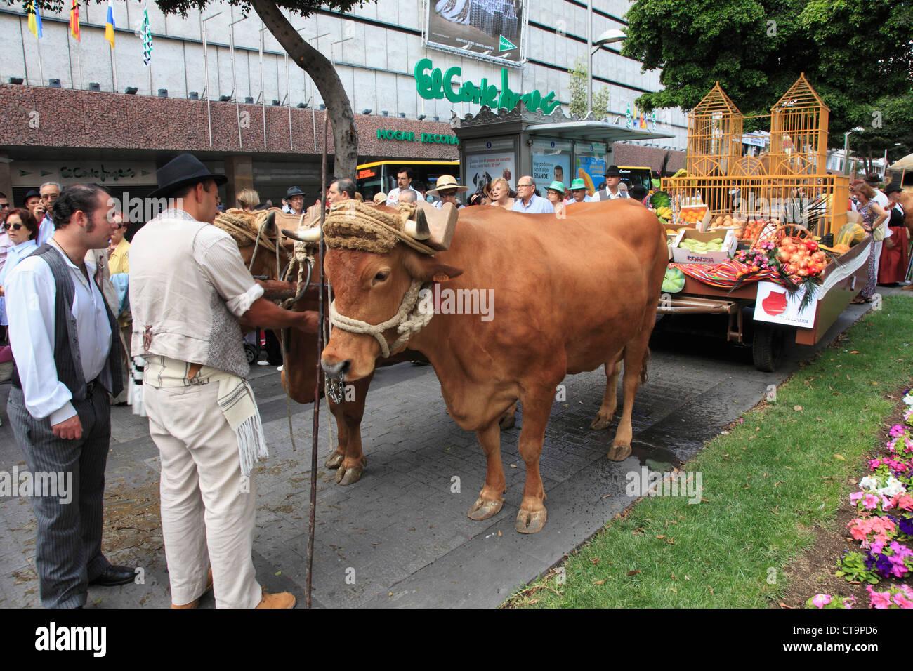 Spain, Canary Islands, Gran Canaria, Las Palmas, Dia de las Canarias, festival, procession, oxcart, - Stock Image