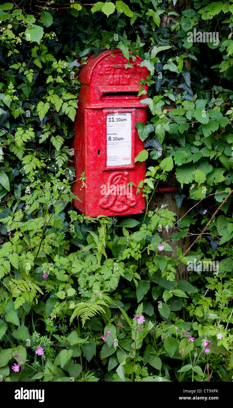 Edwardian post box for letters only with King Edward VII symbol in a Dartmoor village hedge - Stock Image