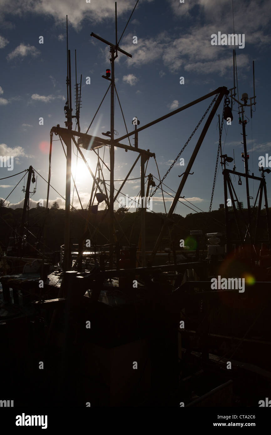 Town of Stornoway, Lewis. Picturesque silhouetted view of the fishing fleet alongside Stornoway Harbour. - Stock Image