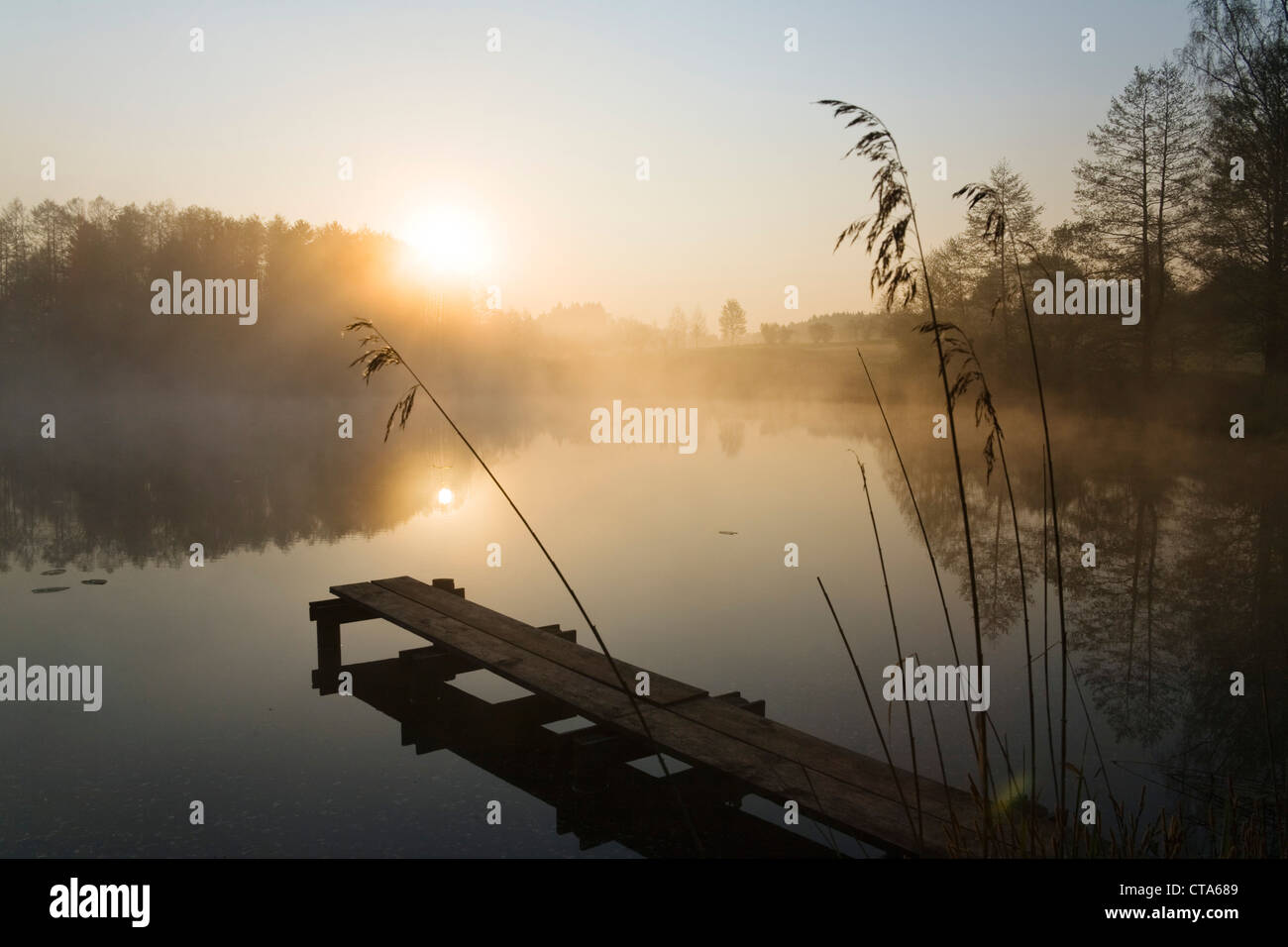 Pond in morning light, Alpine foothills, Upper Bavaria, Germany - Stock Image