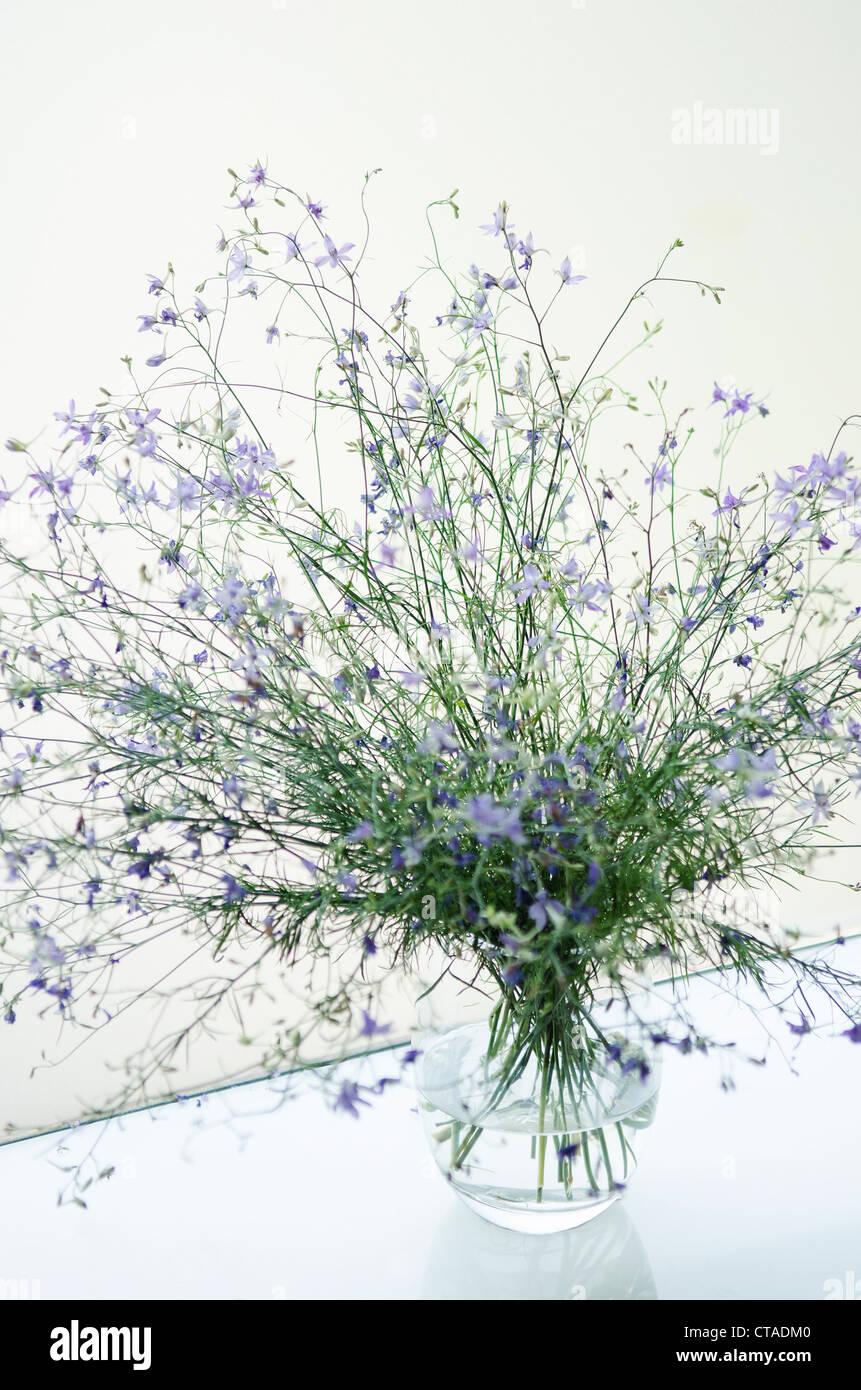 flowers in contemporary minimal interior design - Stock Image