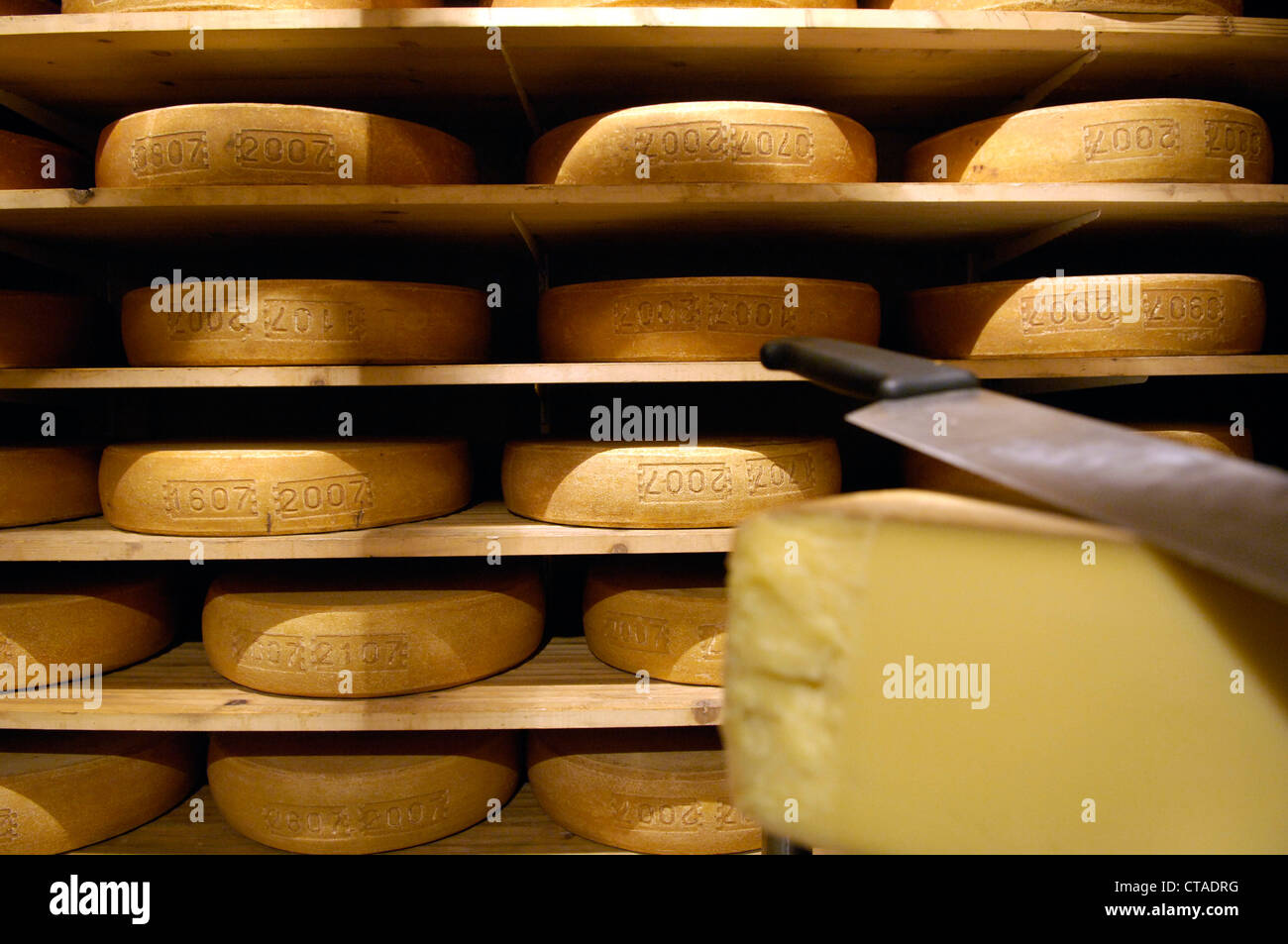 Cheese loaves, Alpine cheese in farmstead, South Tyrol, Trentino-Alto Adige, Italy - Stock Image