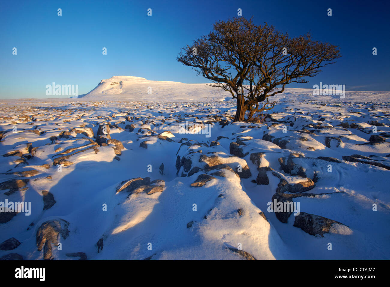 Ingleborough, seen from White Scars limestone pavement Stock Photo