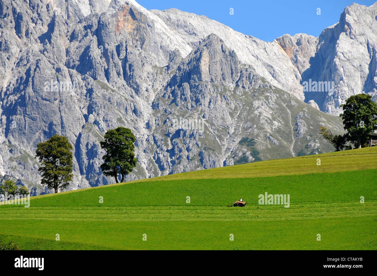 Landscape near Dienten, Hochkoenig, Pinzgau, Salzburg-land, Austria Stock Photo