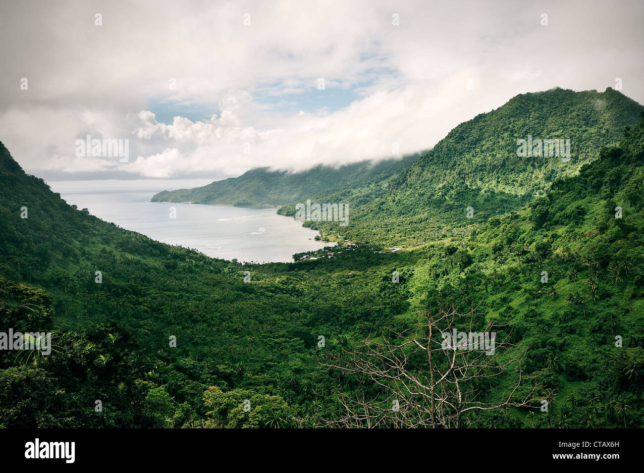 View at bay and tropical mountains with rainforest, Upolu, Samoa, Southern Pacific - Stock Image