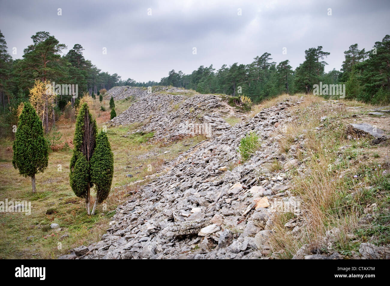 Boundry wall of the Germanic Tribe, ruin, historic sight, island Gotland, Sweden - Stock Image