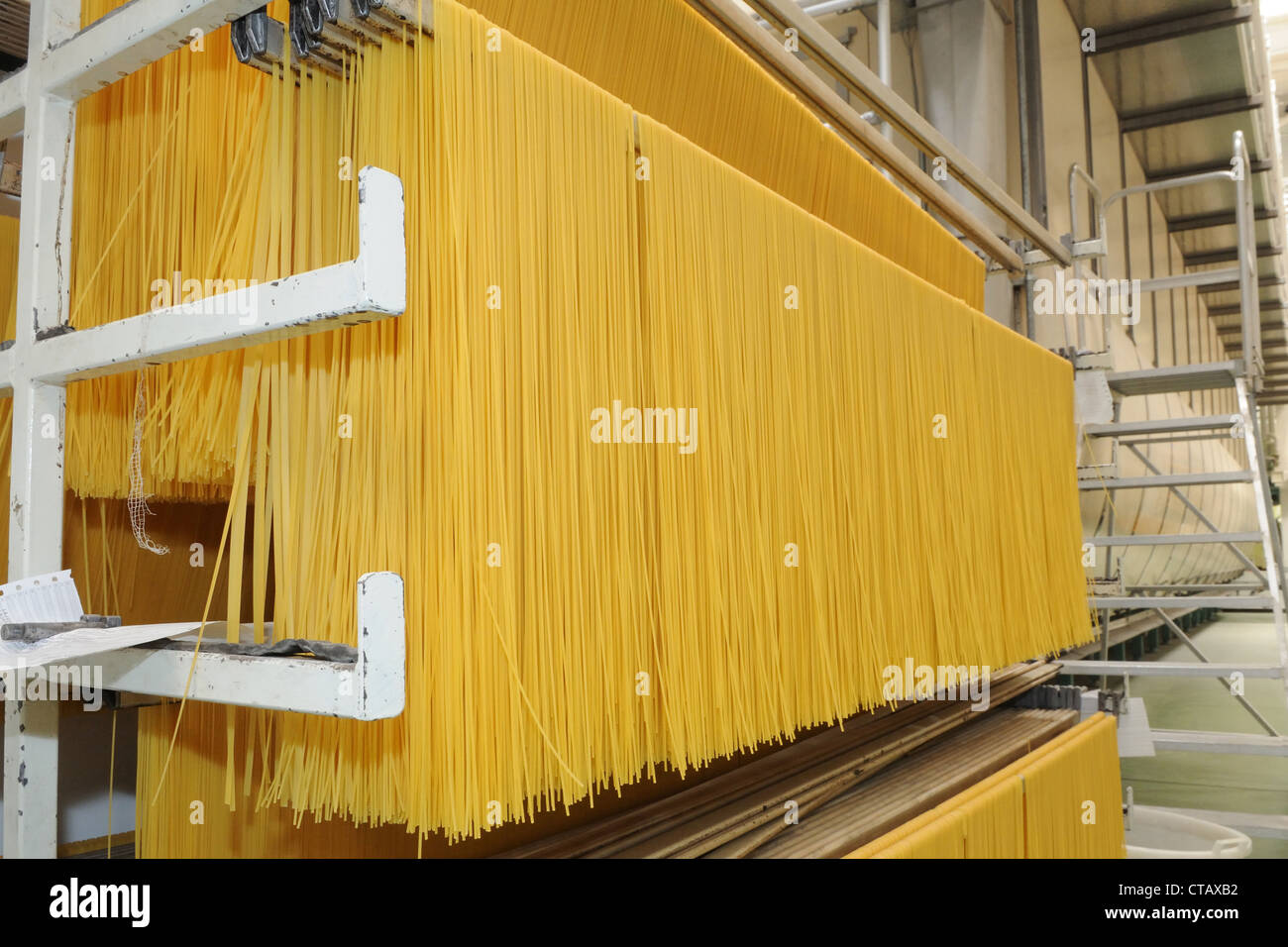 Spaghetti hung out to dry - Stock Image
