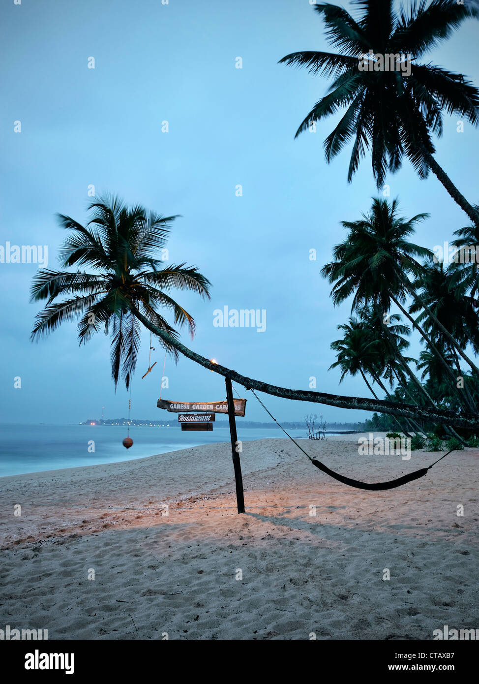 Crooked palm tree with hammock at Tangalle beach at dawn, Sri Lanka, Indian Ocean - Stock Image