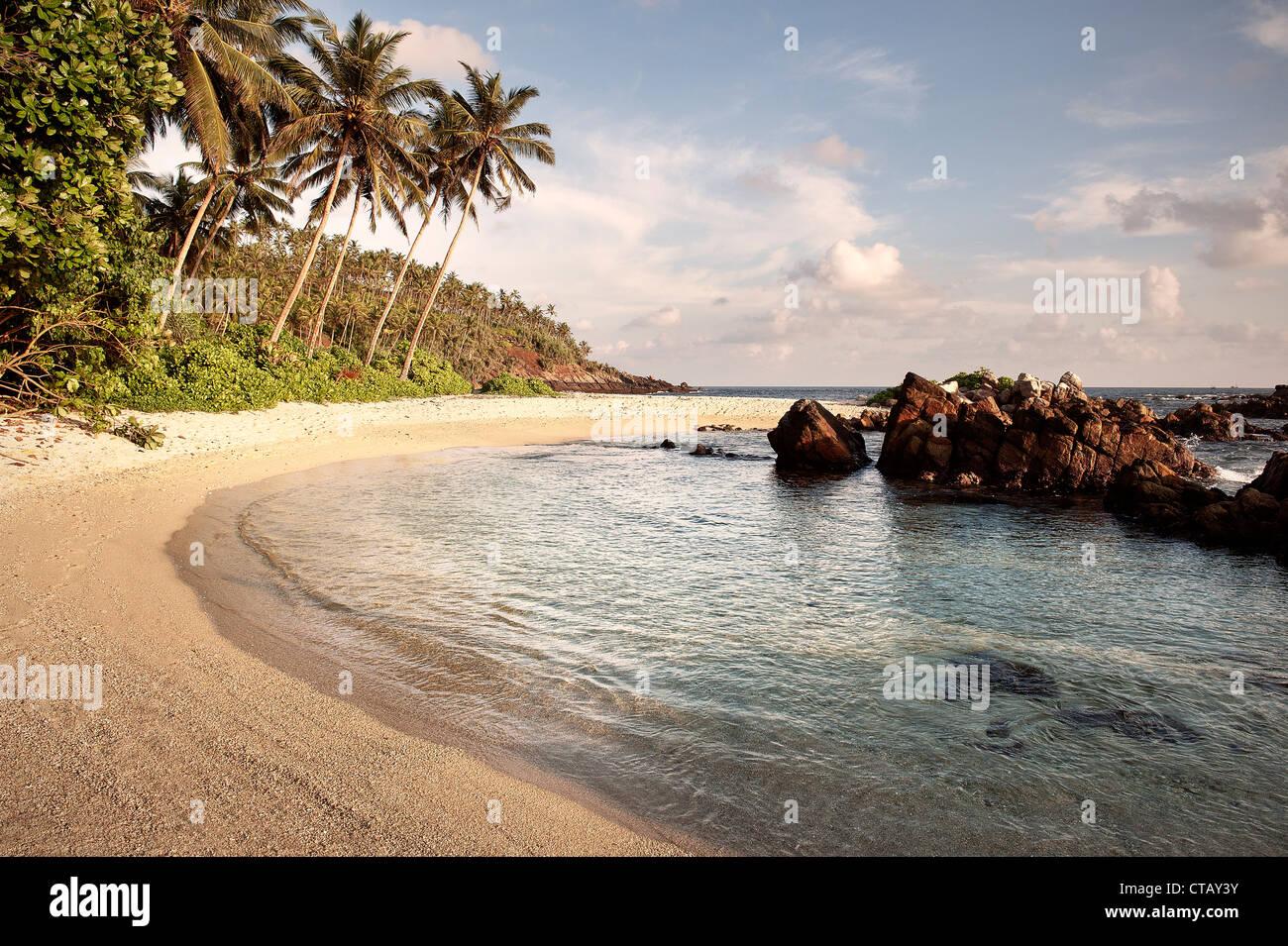 Secluded bay, Palm beach with rocks, Mirissa around Matara, Sri Lanka, Indian Ocean - Stock Image