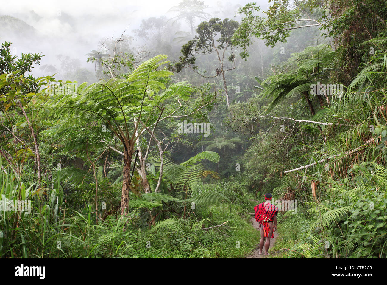 Ifugao man in traditional clothes in jungles, Banaue, Ifugao, Luzon Island, Philippines, Asia - Stock Image