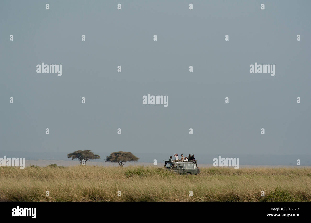 On Safari in Amboseli - Stock Image