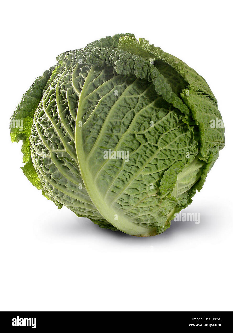 Fresh healthy looking savoy cabbage isolated on white background. - Stock Image