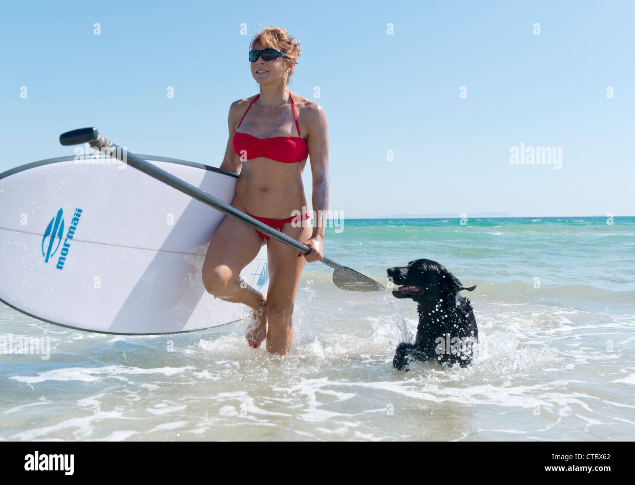 Woman with her pet labrador and stand up paddle surf board. - Stock Image