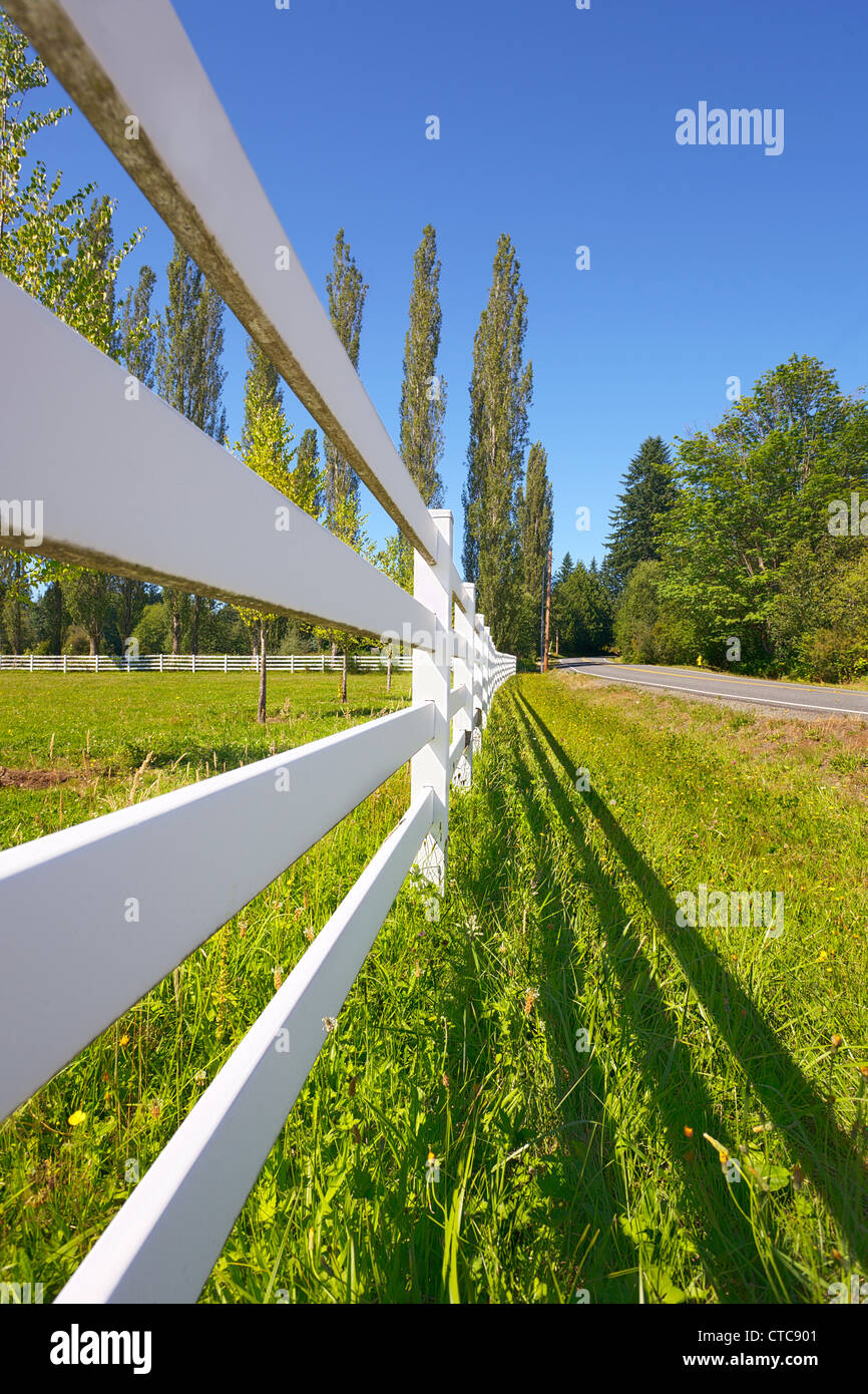 Pasture fence next to a country road on a sunny summer afternoon - Stock Image