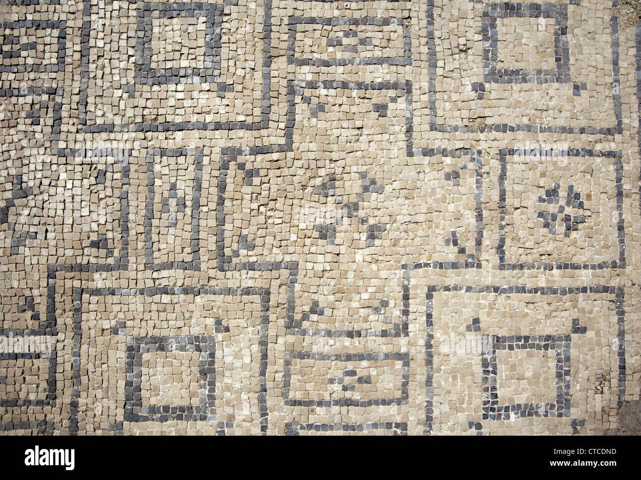 Floor tiles at an ancient roman bath at the archaeological site floor tiles at an ancient roman bath at the archaeological site beit shean national park israel dailygadgetfo Images