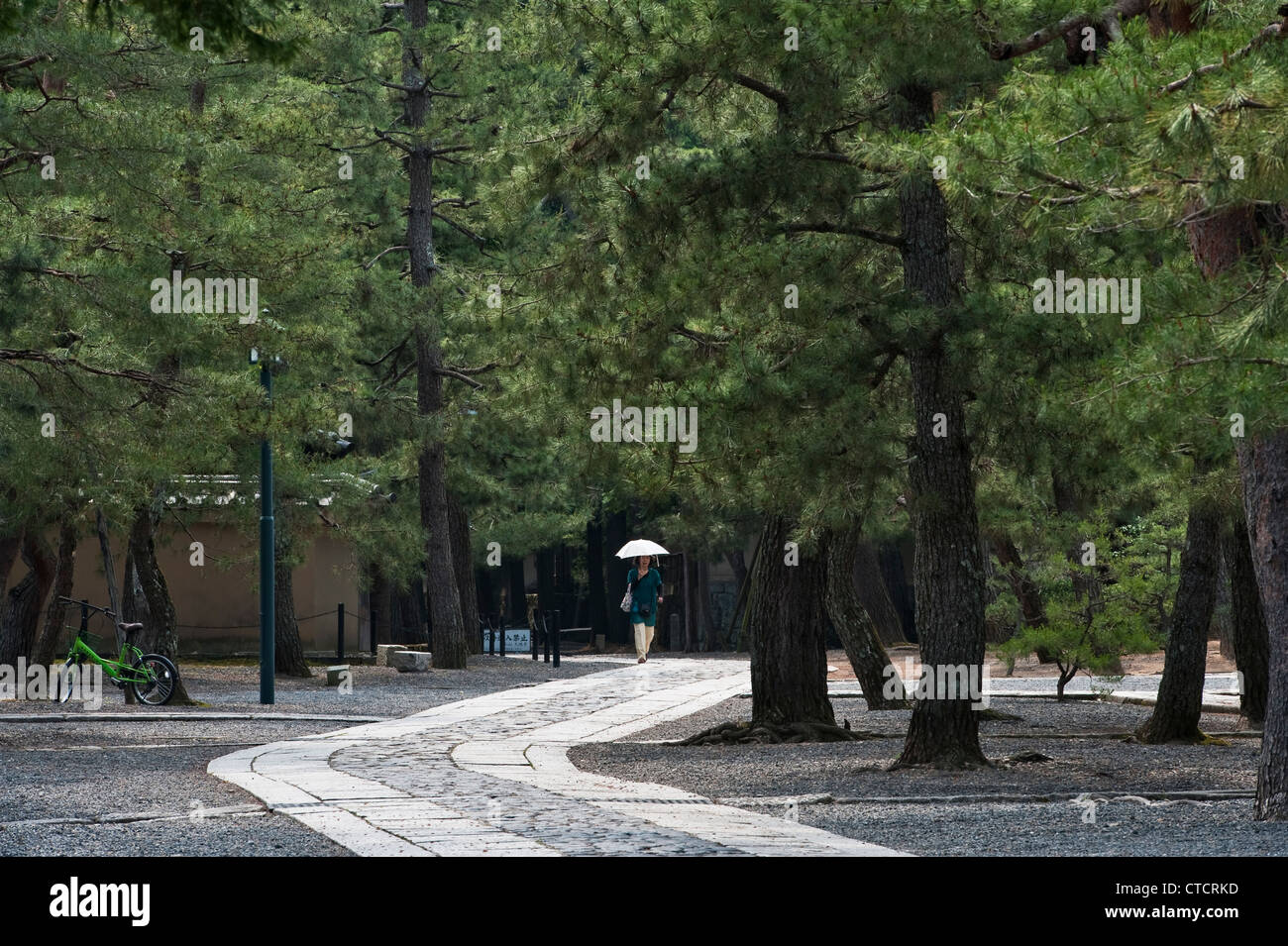 Kyoto, Japan. Walking through the peaceful temple complex of Daitoku-ji beneath the black pines (pinus thunbergii) - Stock Image