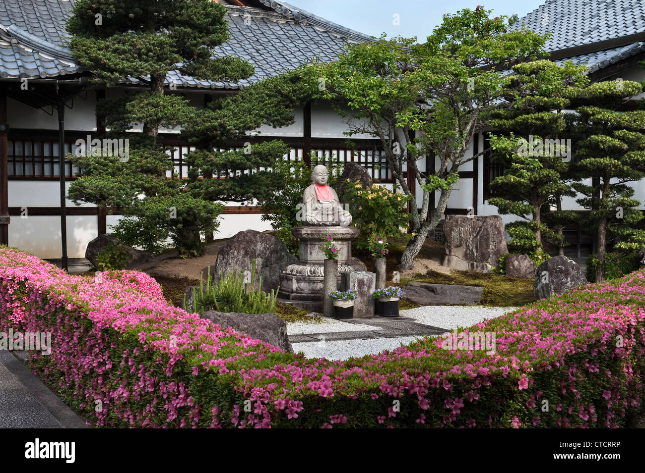 Kyoto, Japan. Clipped azalea (tsutsuji) hedges line the entrance to a sub-temple in the Myoshinji temple complex - Stock Image