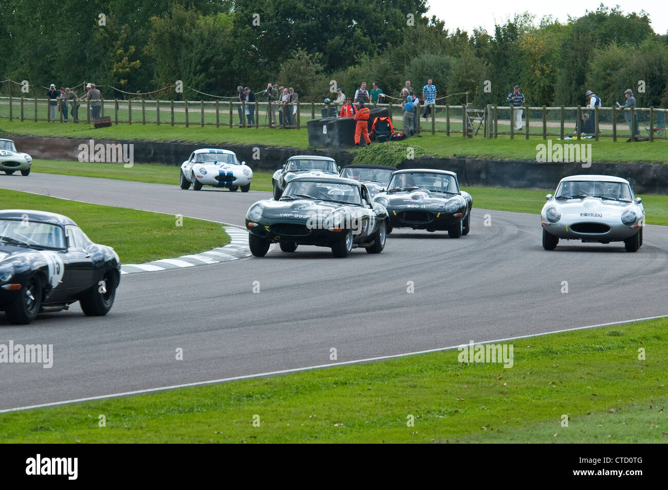 E-Type Jaguars Racing at Goodwood - Stock Image