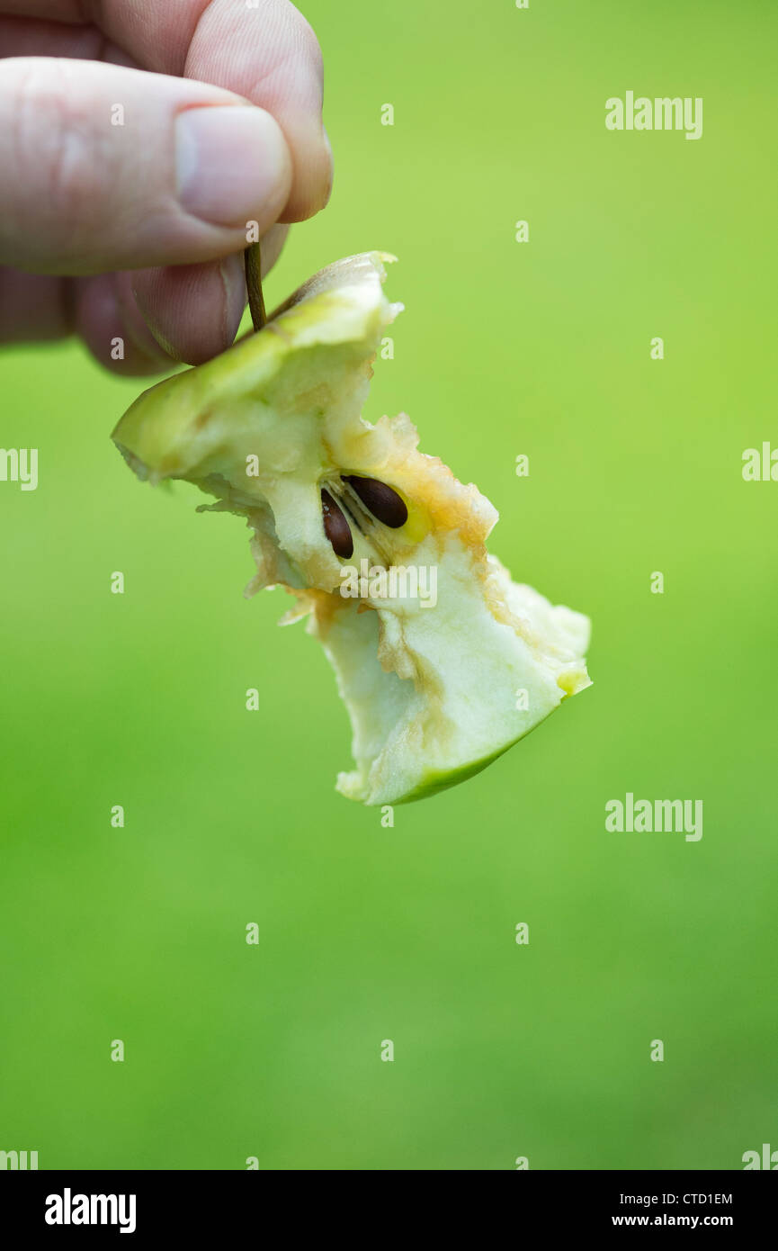 Hand holding an Apple core - Stock Image