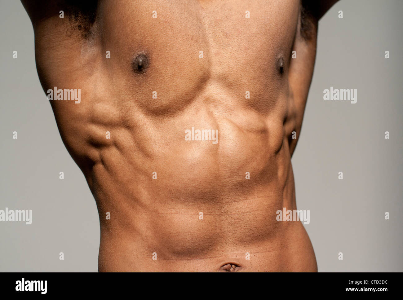 Front View Torso Anatomy Heart Stock Photos & Front View Torso ...