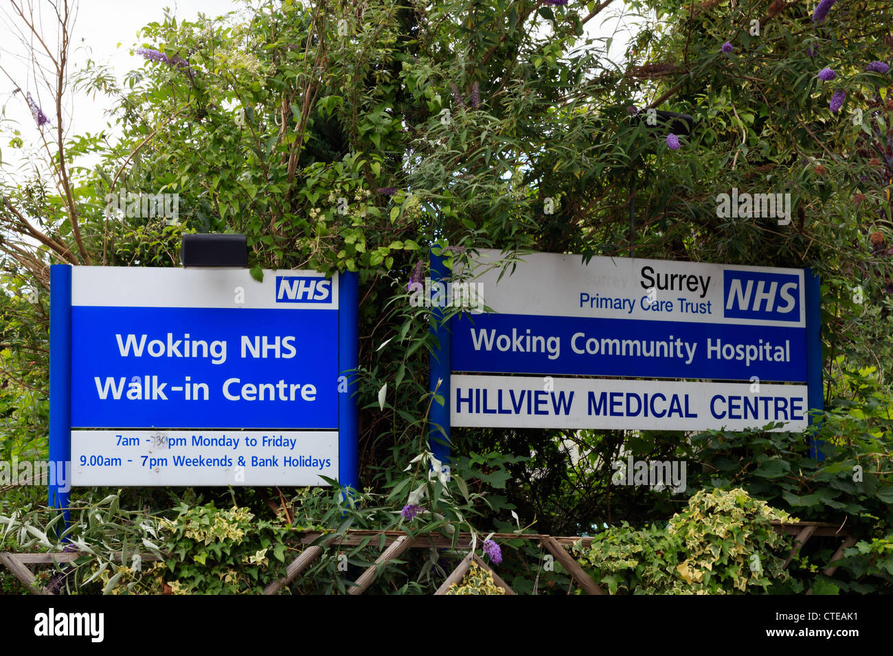 Woking Community Hospital and Woking NHS Walk-in Cenre signs - Stock Image