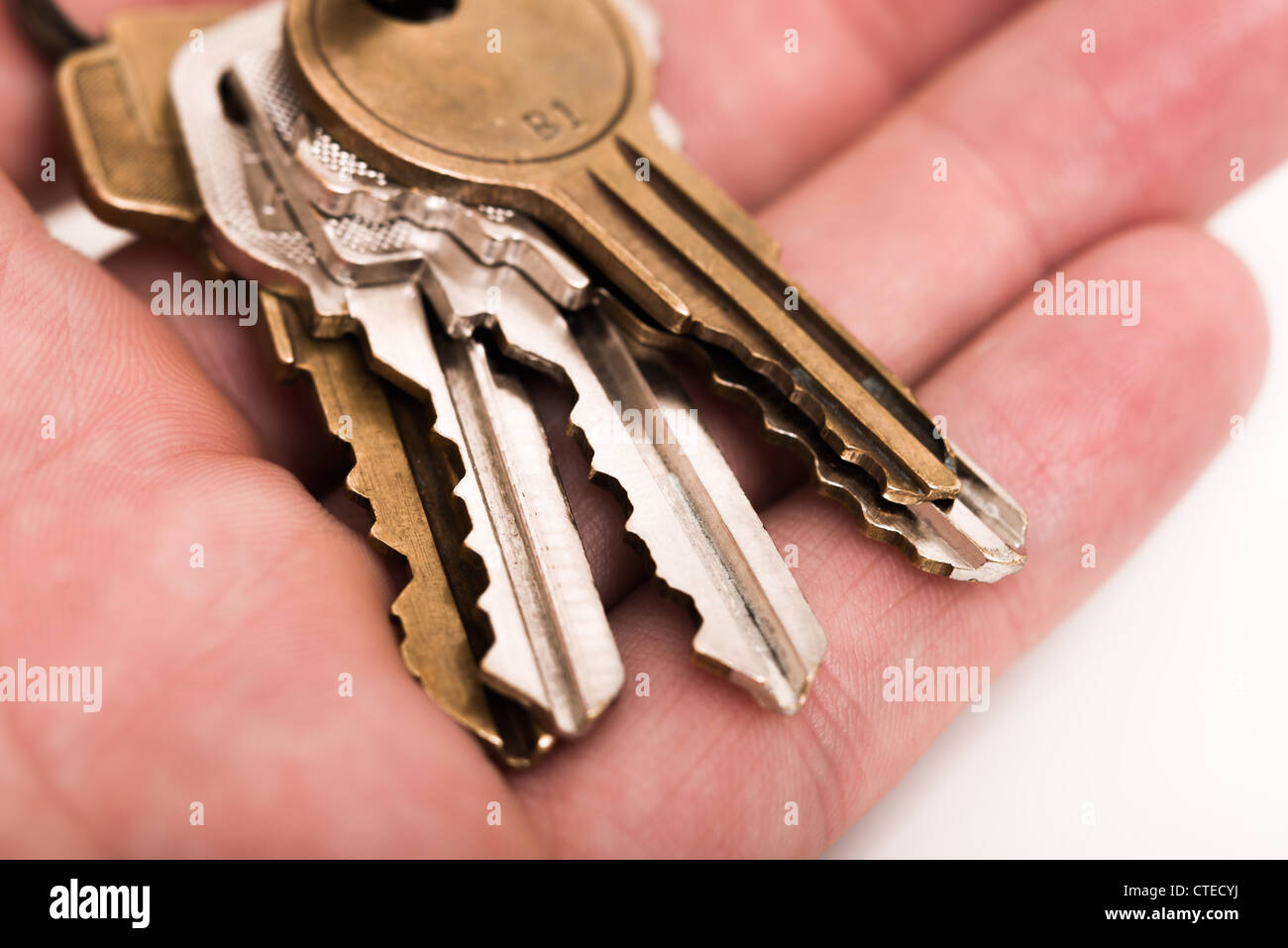 Keys in the hand Stock Photo