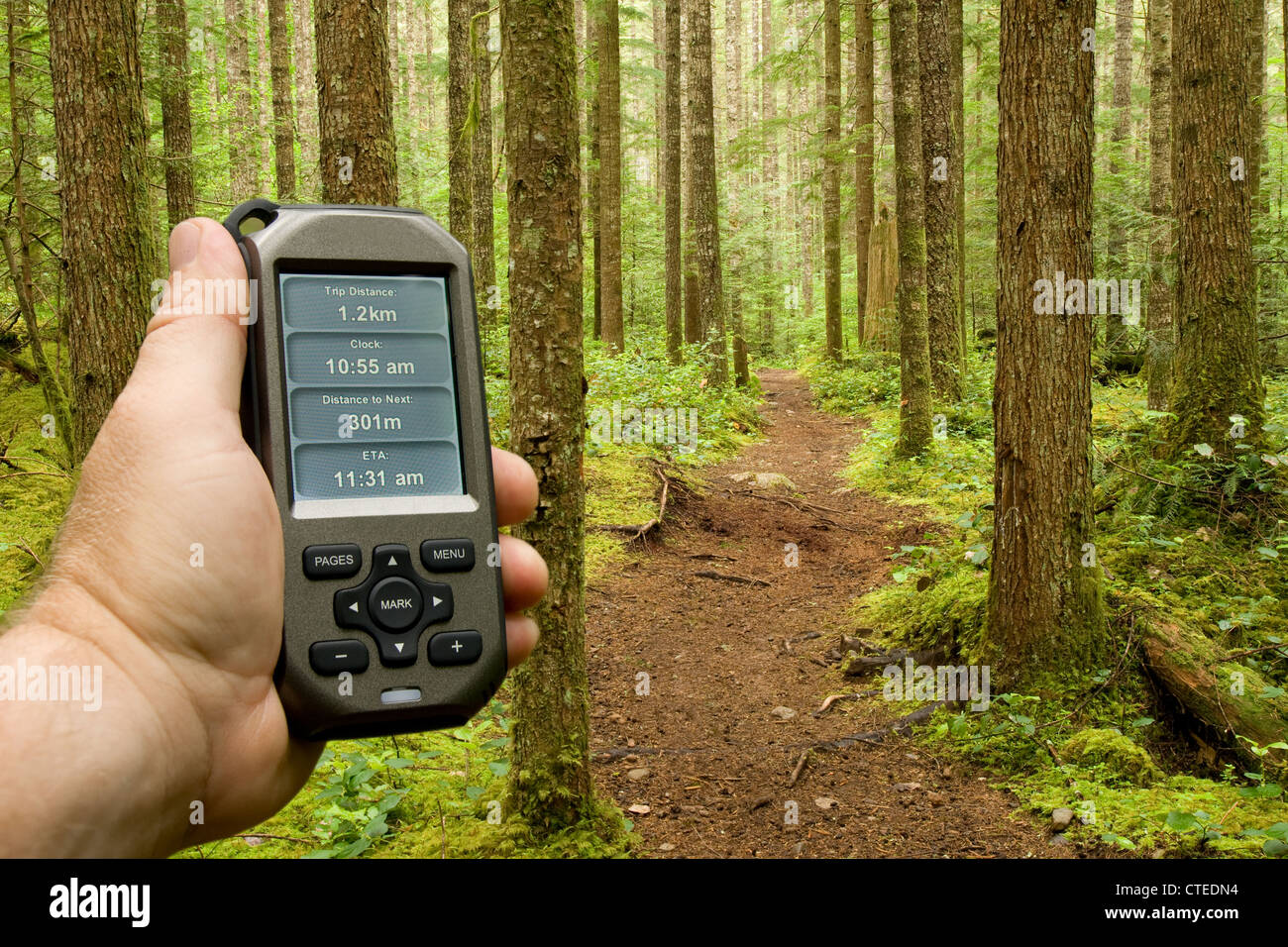 A handheld GPS unit is used to check progress and distance along a forest trail - Stock Image