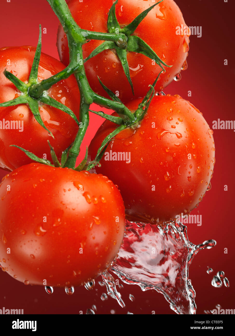 Fresh juicy appetizing tomatoes on the wine splashed with water - Stock Image