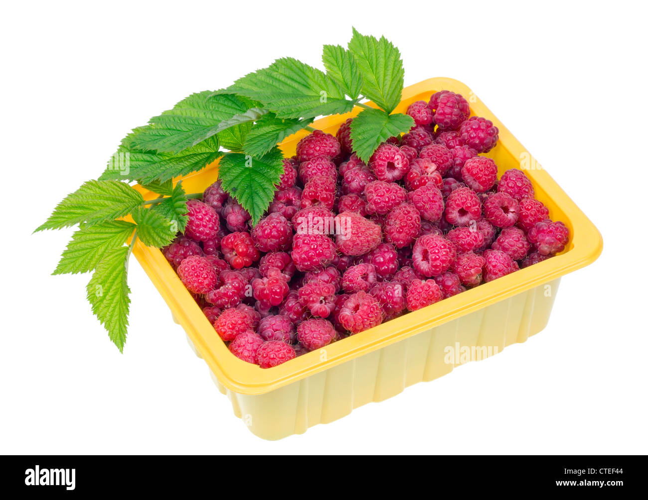 Ripe red raspberries in a yellow plastic container. Fruits are grown without fertilizers, environmentally friendly - Stock Image