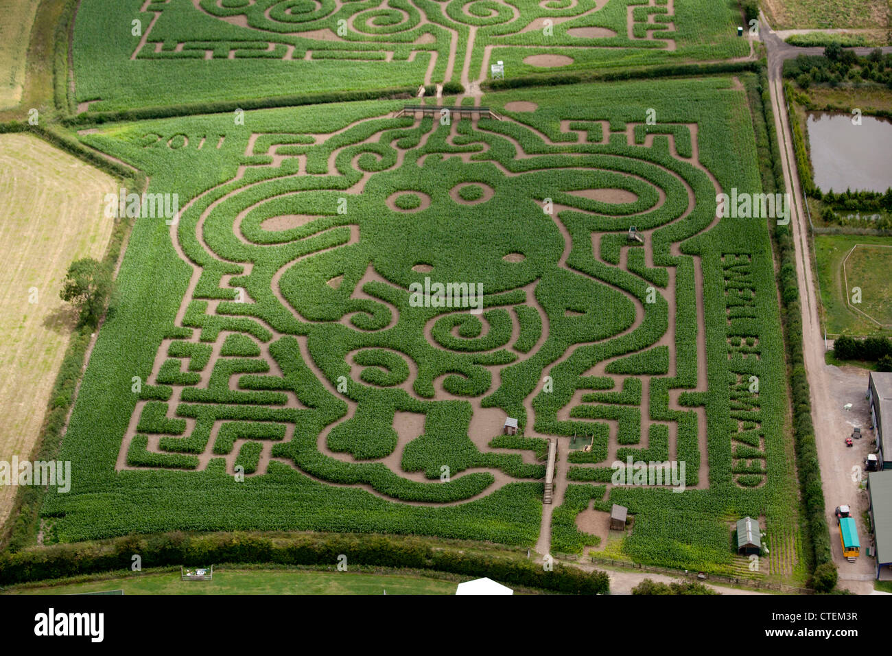 Maize Maze at Postern House Farm, Tatenhill,  Burton Upon Trent,  Staffordshire. Created by brothers Tom and Ivor - Stock Image