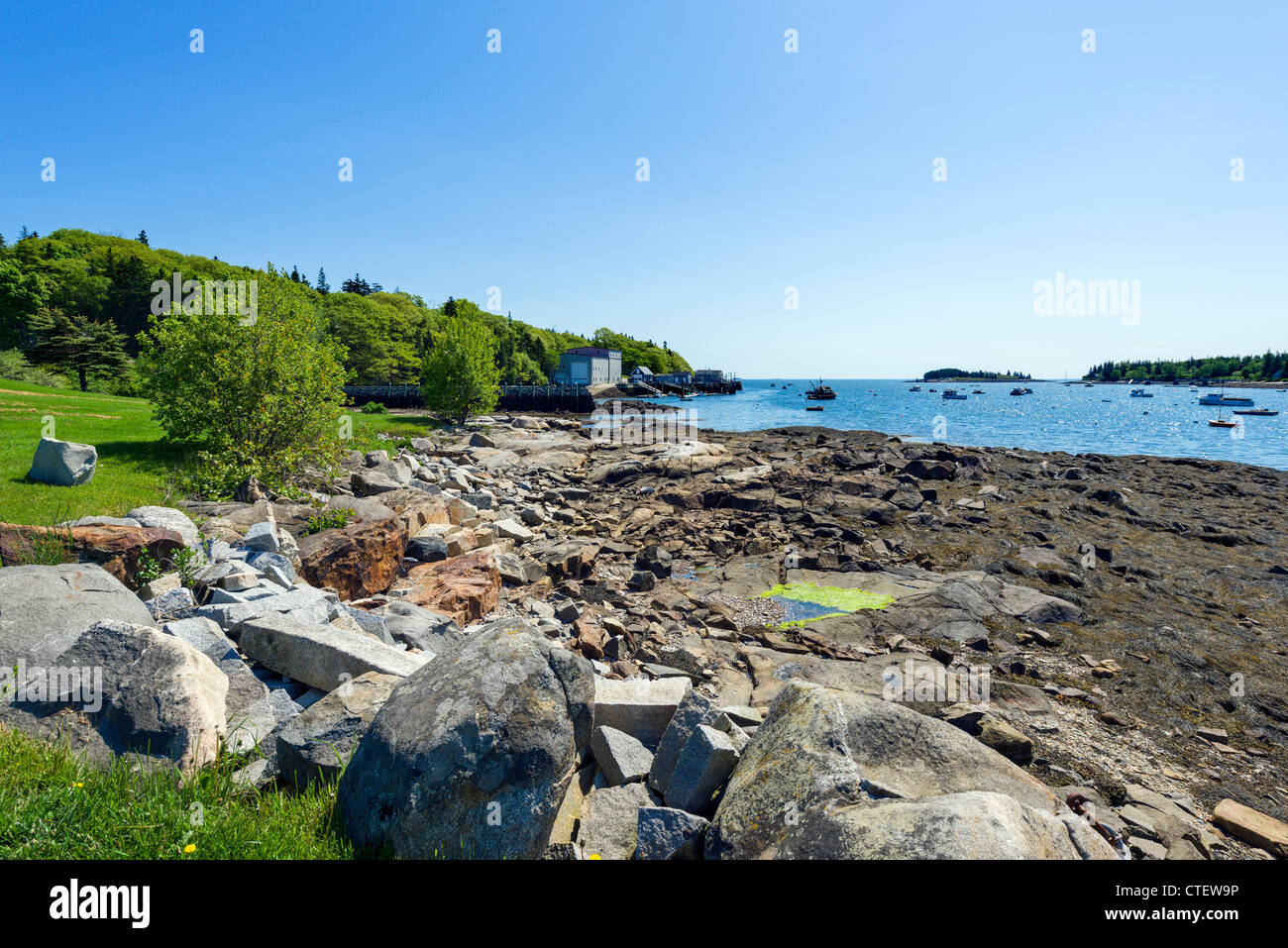 Coast in the village of Tenants Harbor on St George Peninsula, Knox County, Maine, USA - Stock Image