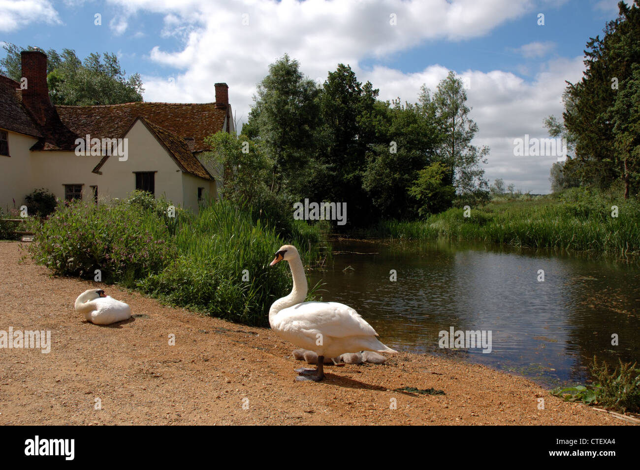 """Willy Lott's Cottage at Flatford Mill, the setting for John Constable's famous painting """"The Hay Wain"""" Stock Photo"""
