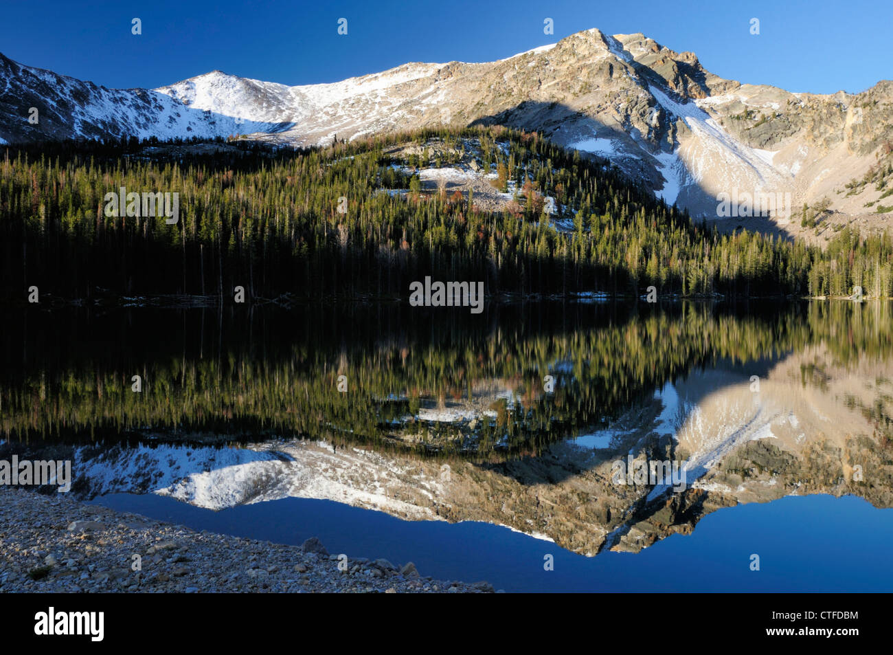 Reflections of trees in Idaho's Mill Lake form odd shape - Stock Image